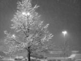 Gc_snow